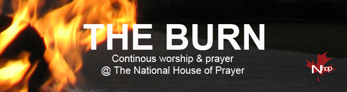 the-burn-website-banner